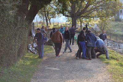 В Кирковското с. Дрангово бяха заклани 16 крави във втория ден на Курбан байрама, който съвпадна с изборите.